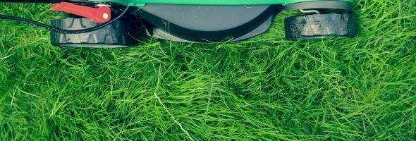 Græsslåning